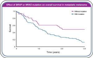 Patients with tumors that contain the BRAF gene mutation have a much worse rate of survival.