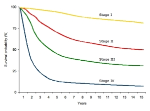 The above chart tracks overall survival rates for each stage of Melanoma (I through IV).  Remember that survival may also be predicted by the subclasses within each stage.  And survival is greatly impacted by the treatment options chosen and the diligence of the patient in observing changes that might be occurring even after being declared disease free.