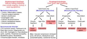 rehab - swallow chart 2